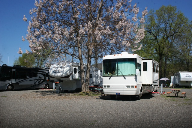 Campsites, Hot Springs, AR